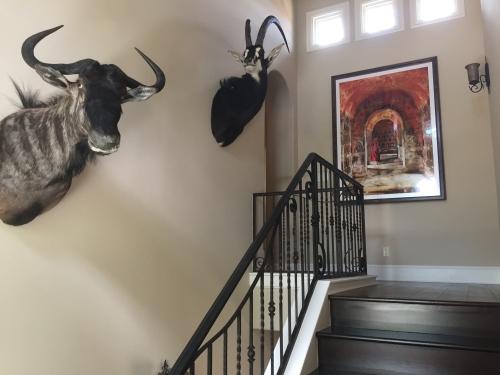 Trophy Installation in Austin