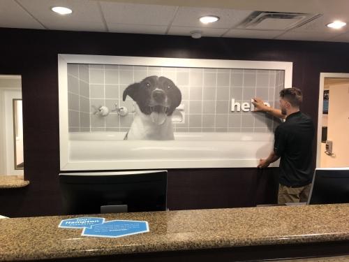 Vinyl Graphic Art Installation for Hotel Lobby in Dallas, Texas