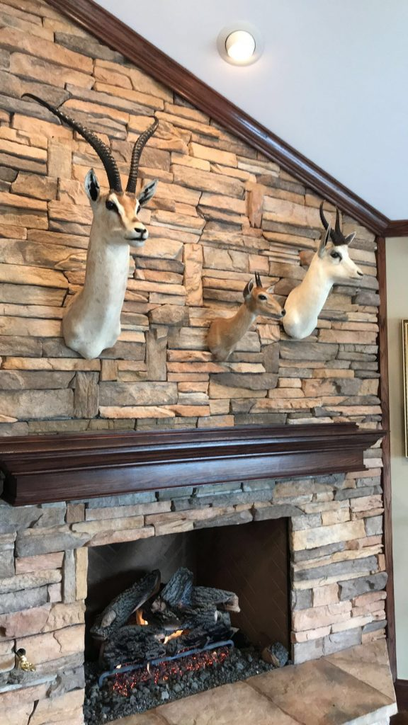 Stone Mount on Fireplace, Dallas TX
